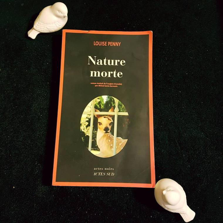 Nature Morte.jpg
